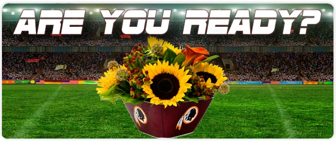 Redskins-Banner