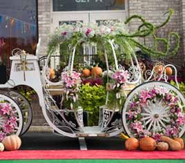 Karin's Florist Hosts a 'Cinderella Dream Celebration