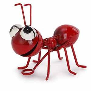 Happy Red Ant