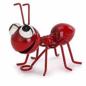Happy Red Ant
