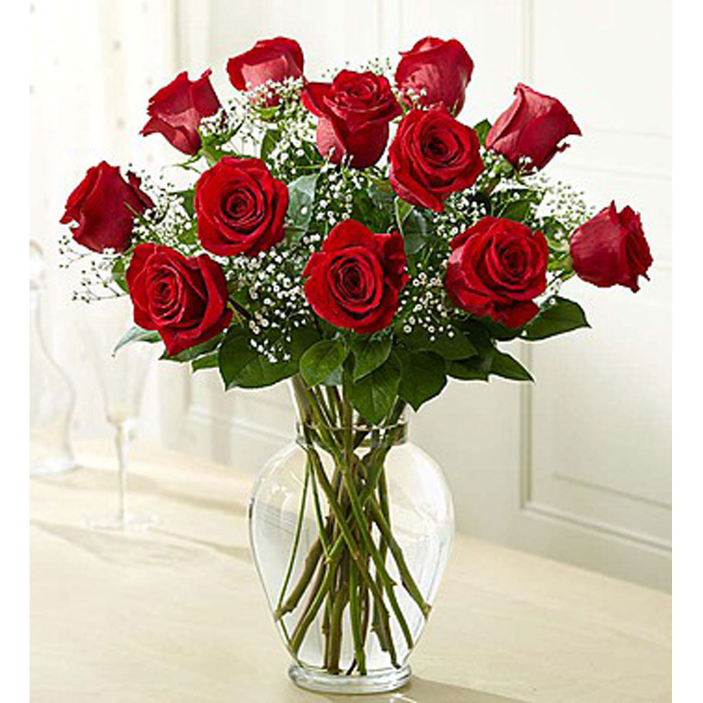 Get well flowers from karins florist fairfax reston hospitals 12 premium roses arrangement izmirmasajfo
