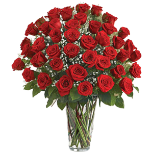 Four Dozen Roses Arrangement