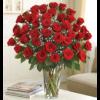 Four Dozen Roses Arrangement