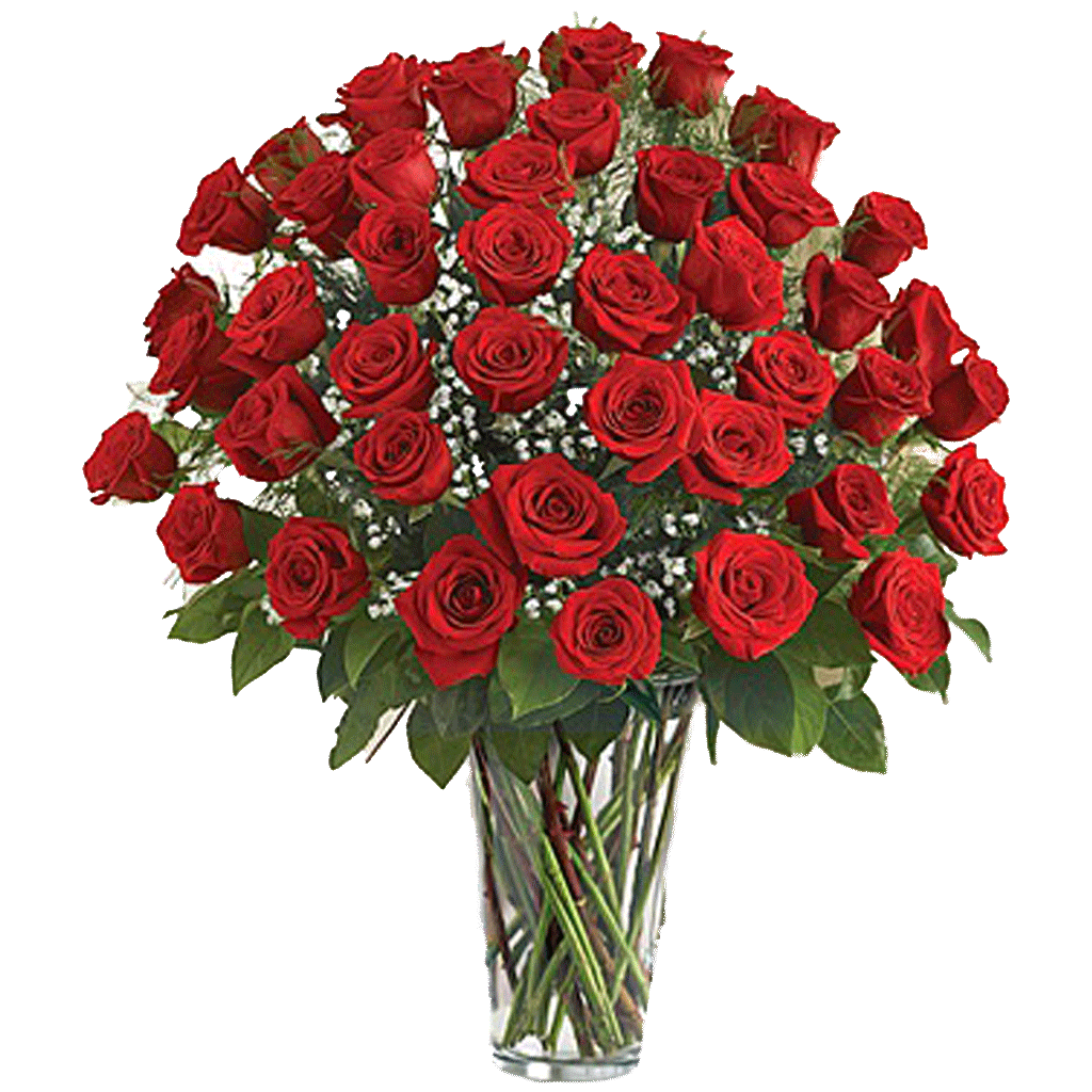 48 roses arrangement designed by award winning karin 39 s florist for 12 dozen roses at your door