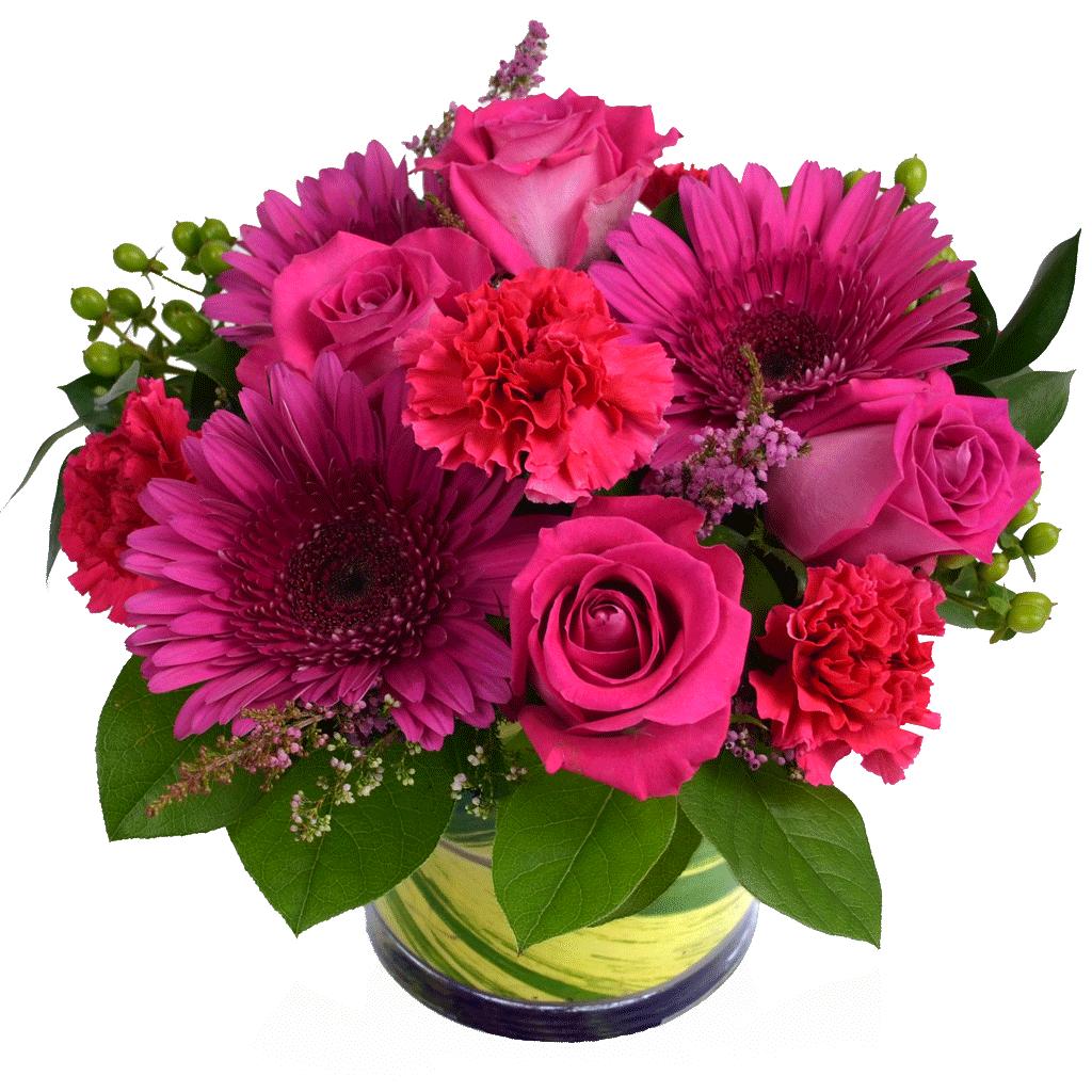 Glorious Gerbera Pink Flowers