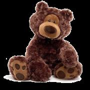 Philbin Bear Chocolate