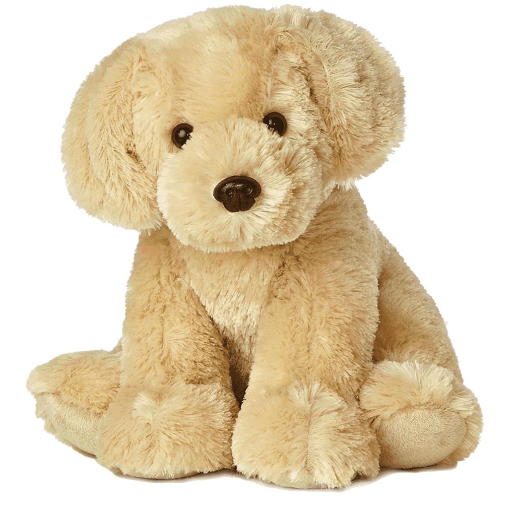 11 Golden Labrador Retriever Puppy
