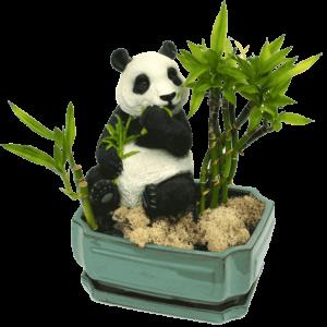 Bao Bao Bamboo Garden
