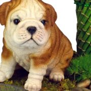 Bulldog Puppy Garden