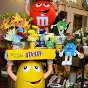 m&m Display at Karins Florist