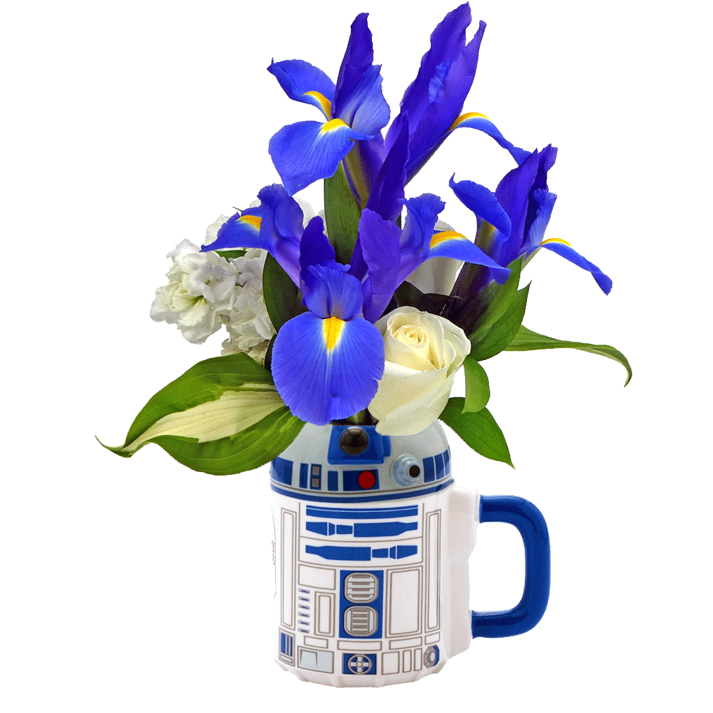 R2D2 Flower Mug