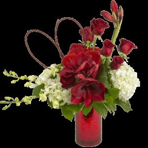 Amorous Amaryllis Bouquet
