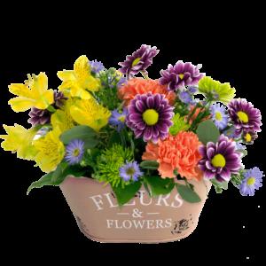 Fleurs & Flowers