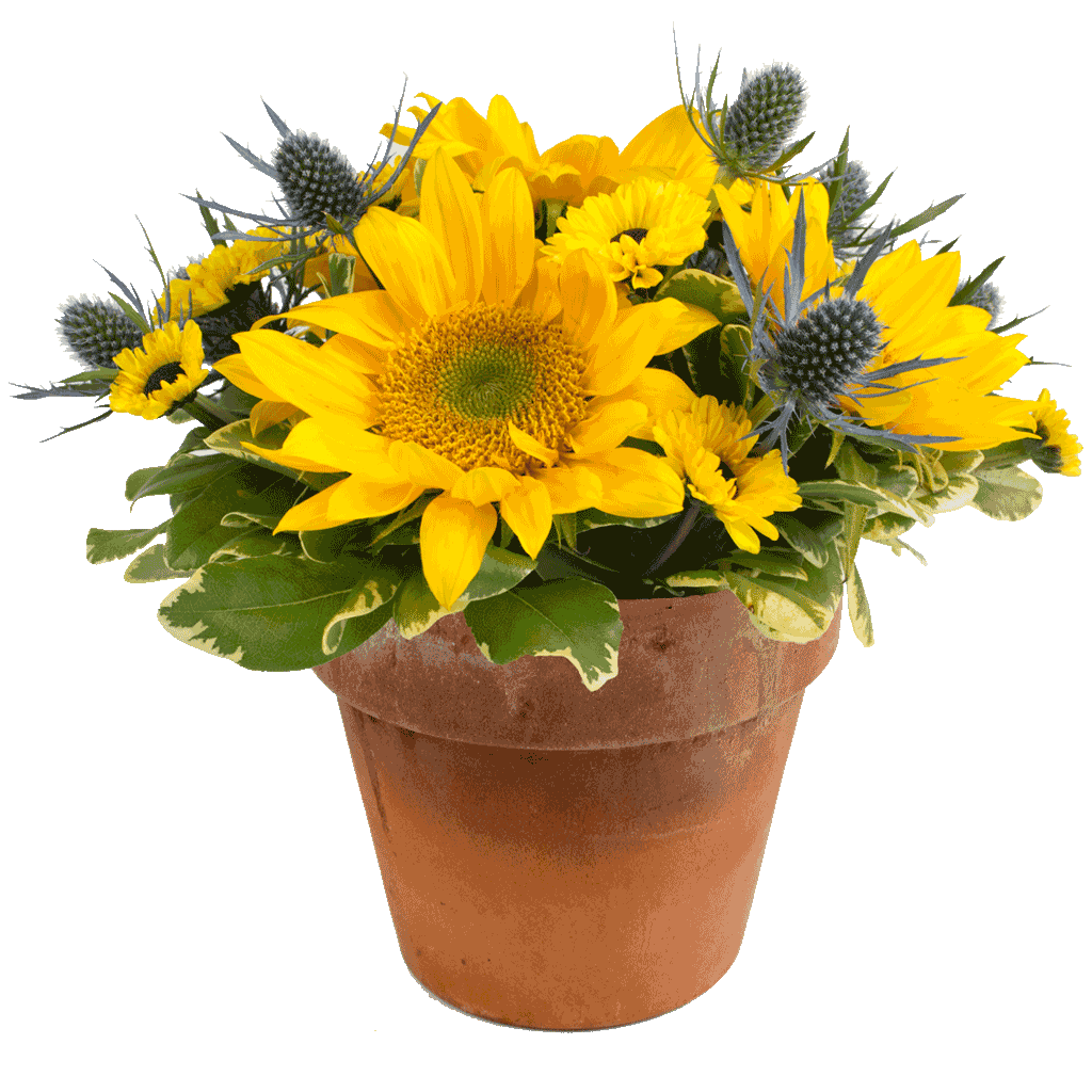 A Sunny Day Bouquet