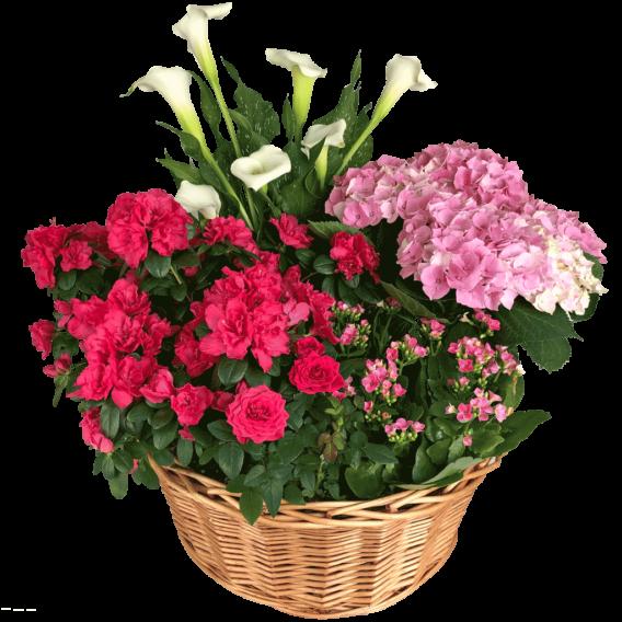 Tivoli Garden Basket