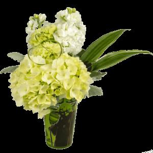 Yoda Pub Mug Bouquet