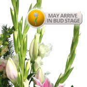 Precious-Pastels-Bouquet-Bud-Stage