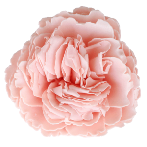 Heaven Scent Soap Flower