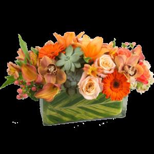 Orange Spice Bouquet