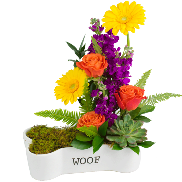 Dog-bone Dish Bouquet