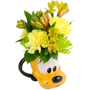 Pluto Mug Bouquet