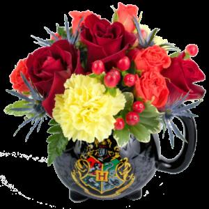 Harry Potter Cauldron Flower Mug